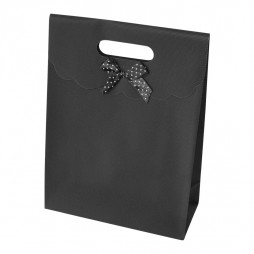 Large Gift bag, with ribbon